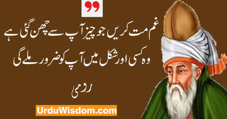 rumi quotes in urdu