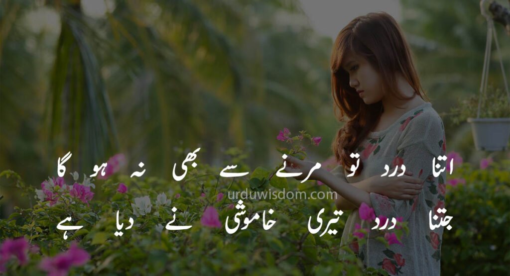 Poetry Love In Urdu 5