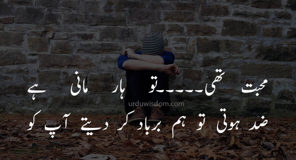 Poetry Love In Urdu 7