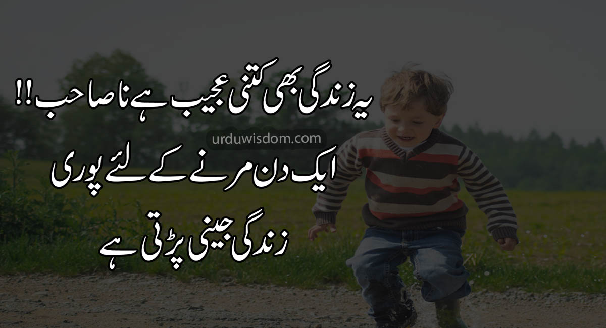 Attitude Quotes in Urdu 2020 4